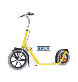 Esla Esla step 4102