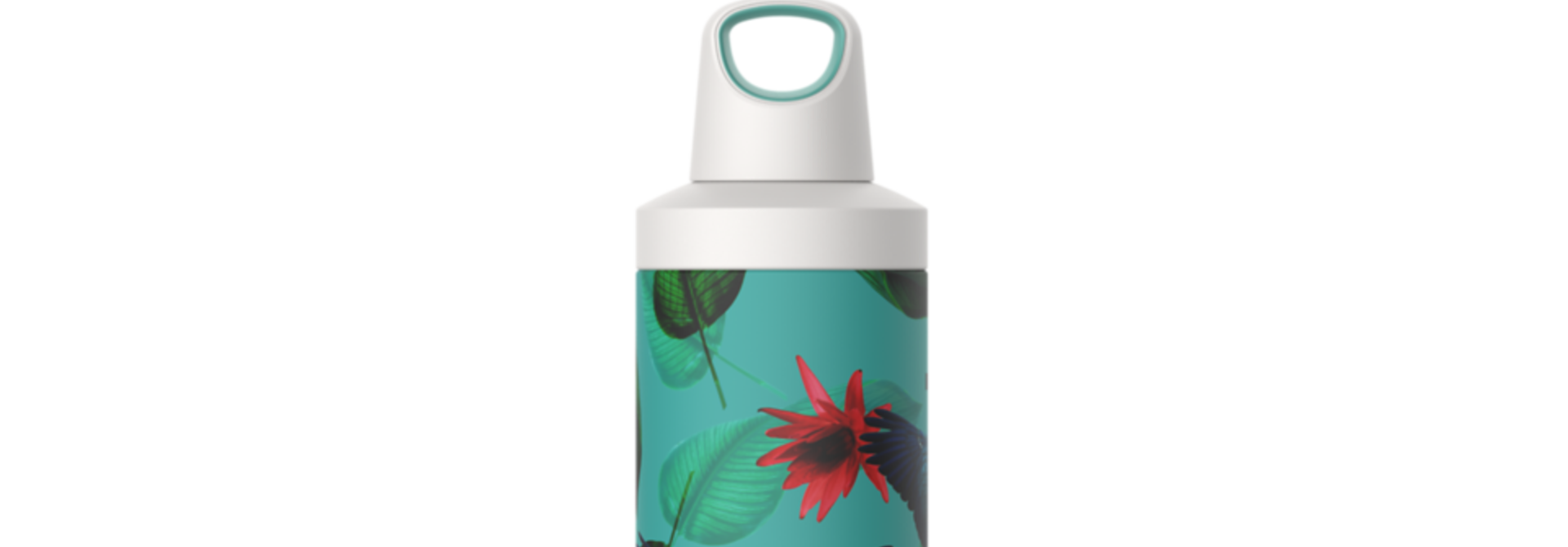 Reno Insulated 500ml - Parrots