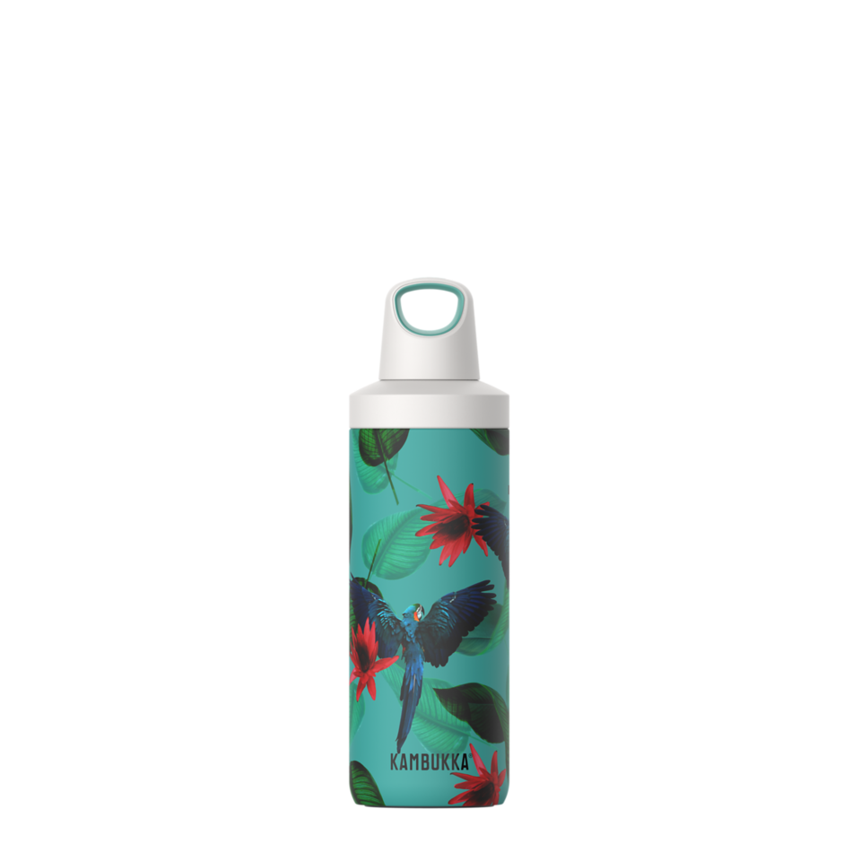 Reno Insulated 500ml - Parrots-1