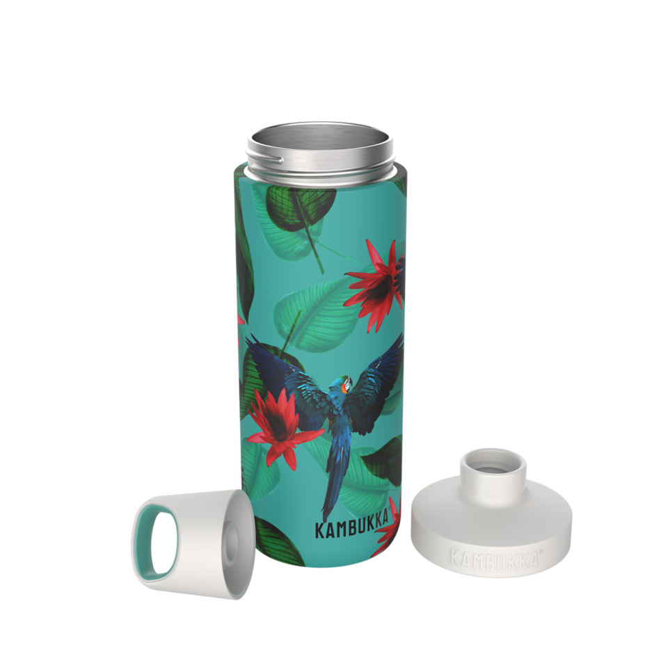 Reno Insulated 500ml - Parrots-3