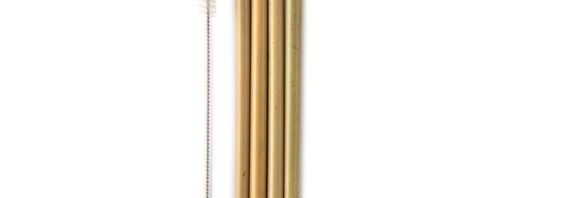 Bamboe Rietjes + borsteltje