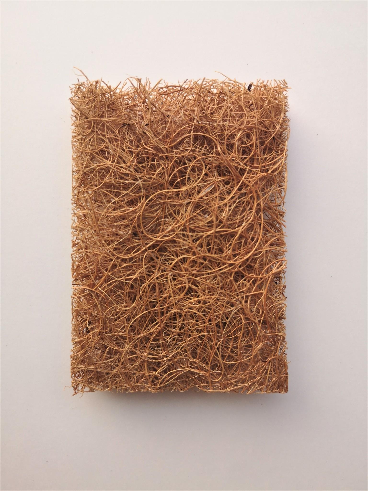 Krasvrije Schuurspons van kokosvezel-3