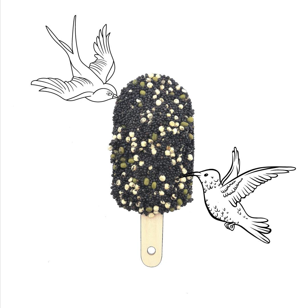 Vogel ijsje - Classic Black-1