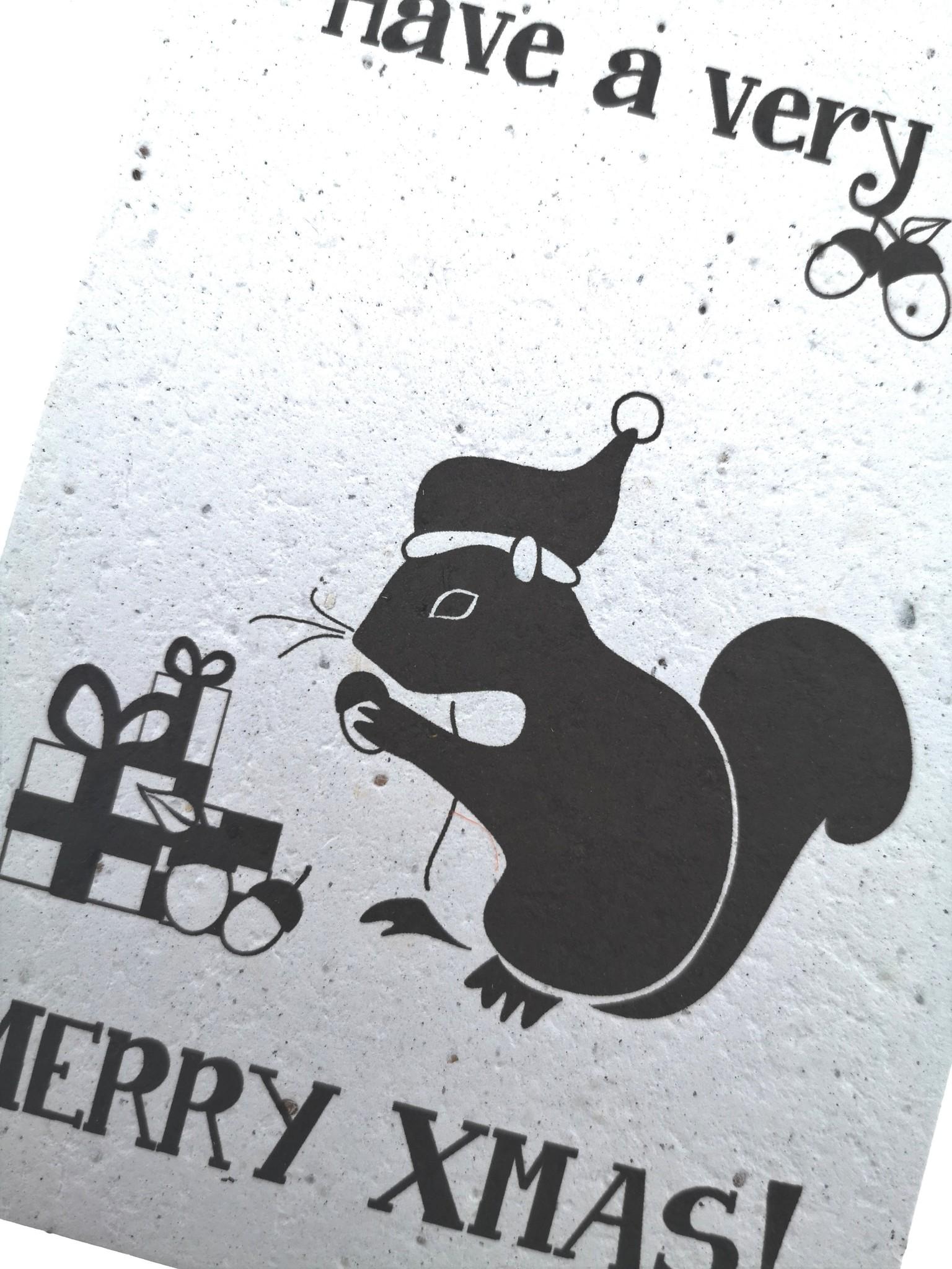 Plantbare kaart - Merry Xmas Eekhoorn-1