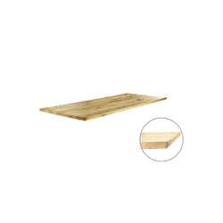 Tafelblad Rechte rand 180x100cm
