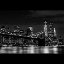 Schilderij | Brooklyn Bridge Skyline