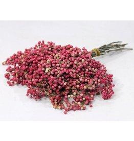 Pepperberries Pink Gedroogd