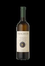 Italy Sauvignon Blanc Friuli DOC Grave 2020