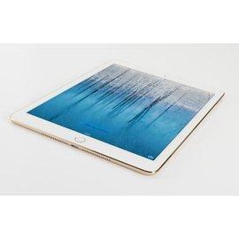 APPLE iPad Air 2 Screen repair
