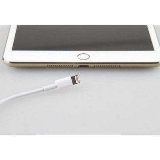iPad Mini 3 oplaadpoort