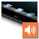 iPad Mini 3 luidspreker