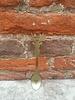 Sabre Koffie lepeltje Rendier groen 10 cm Sabre
