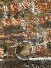 Patisse Patisse Uitsteekvorm 6 cm 'Rond'