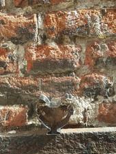 Patisse Patisse Uitsteekvorm 6 cm 'Kip'