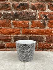 Tokyo Design Nippon Cup 'Black Dots'