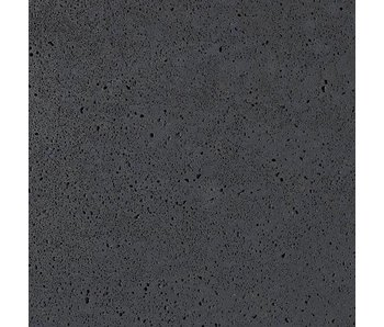 Schellevis Platten Carbon 100x100x8 cm