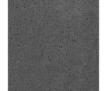 Schellevis Platten Anthrazit 120x120x12 cm