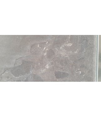 Spotted Bluestone Facet 60x60x3