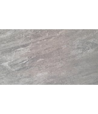 Gaja Grey 40x80x3