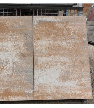 Quinta Linear Muschelkalk 60x90x8 cm