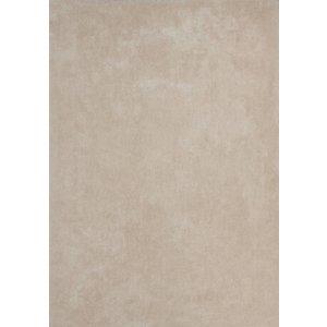 DF0062012-246 Ivory Rug