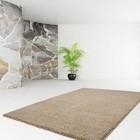 DF0062012-436 Beige Carpet