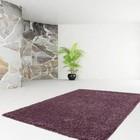 DF0062012-441 Purple Carpet