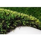 DF0062012-576 Green Rug