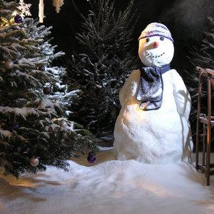 Kerstboom Sneeuwbox
