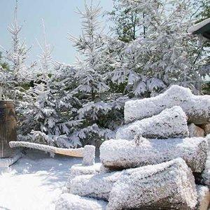 Tuin Sneeuwbox