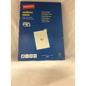 Staples A4 Multiuse Labels 100 vellen -1DS-591
