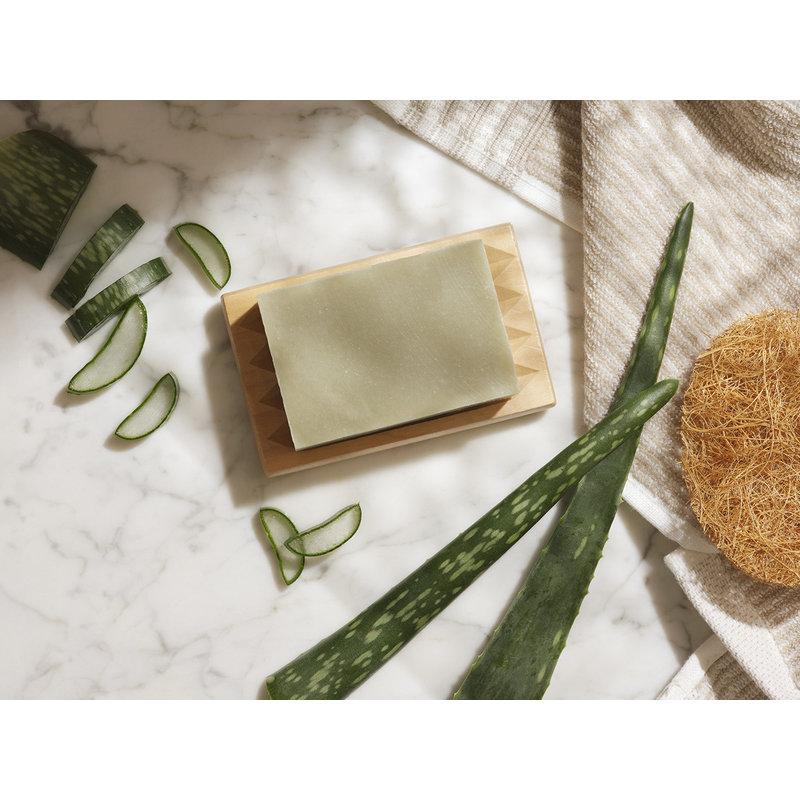 Aloe vera body and shampoo bar