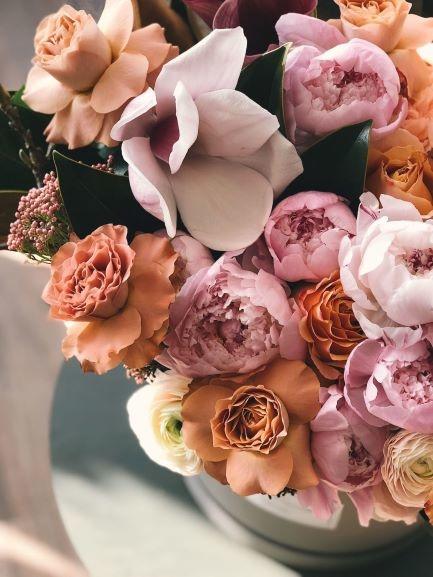 Zoete rozen, favoriet bij jong en oud!