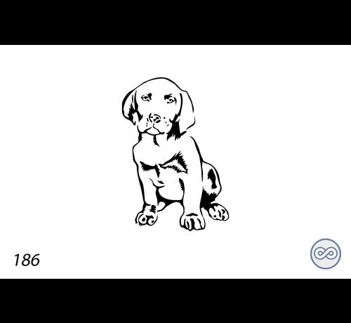 Grafsteenwinkel Afbeelding van een hond