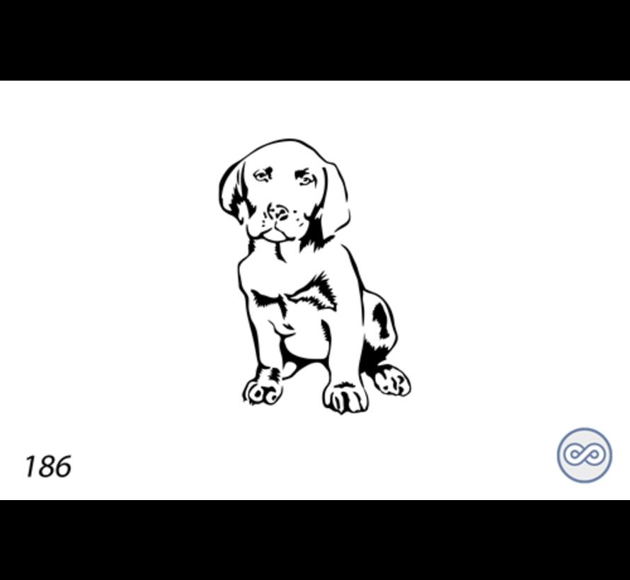Afbeelding van een hond