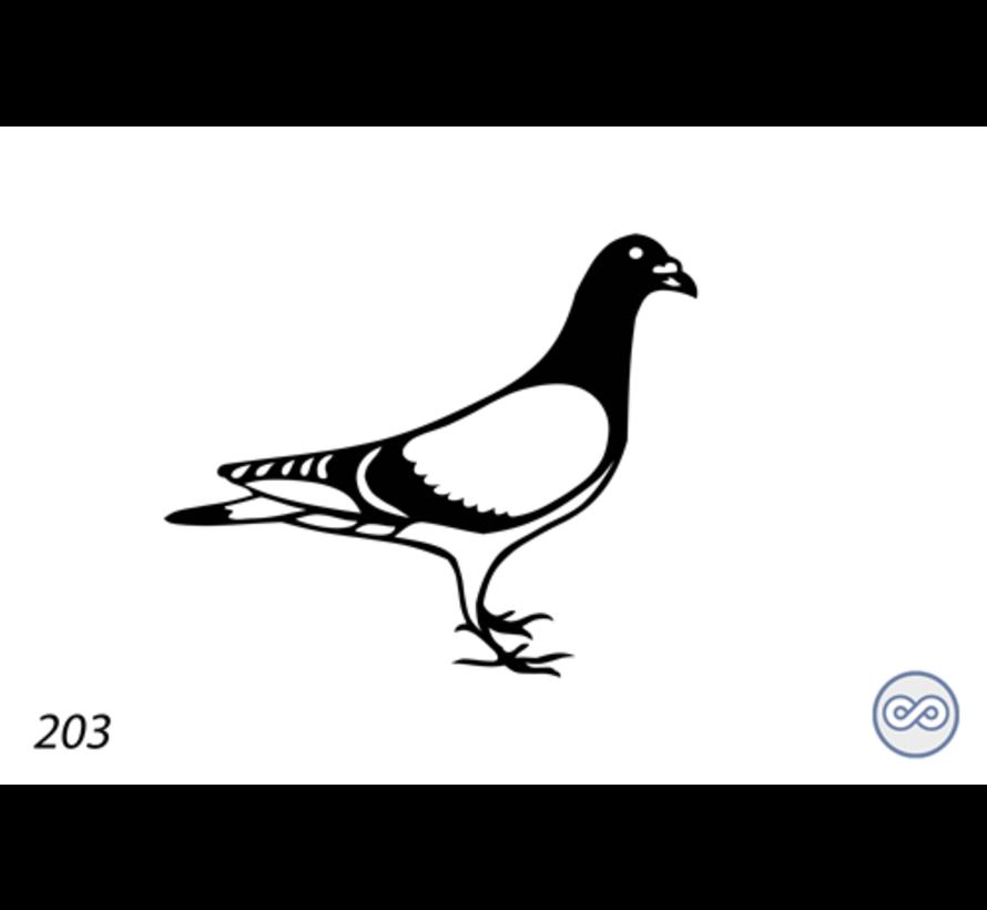 Afbeelding van een duif