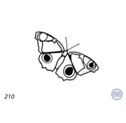 Grafsteenwinkel Afbeelding vlinder