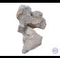 Bijzondere vorm ruwe grafsteen