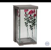 Graflantaarn met roos