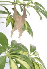 A.S Plant Animal OERANG OETAN