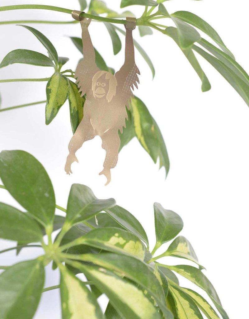 A.S Oerang-oetan Plant Animal