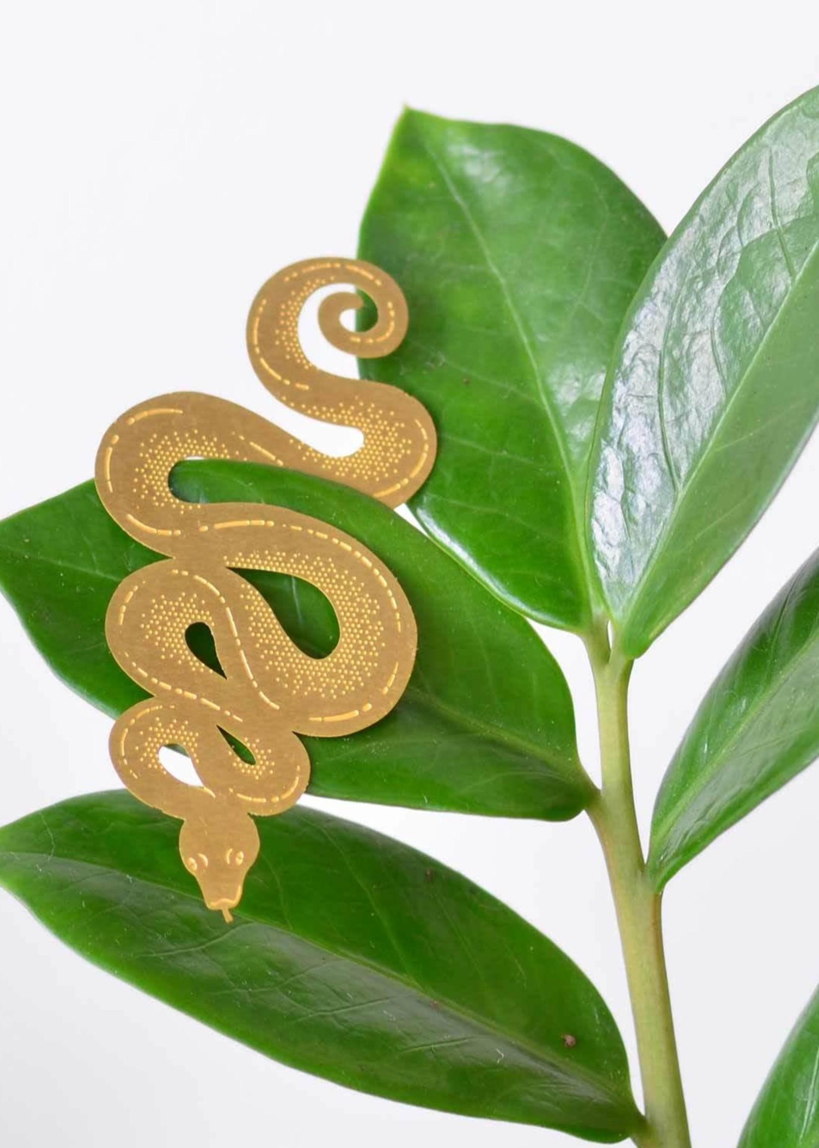 A.S Plant Animal SLANG snake