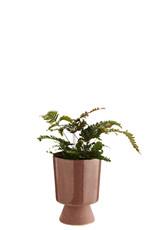 Madam Stoltz Plant pot op voetje ROZE 10.5 x 14.5 cm