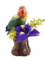 Quail Vaasje DWERGPAPEGAAI love bird