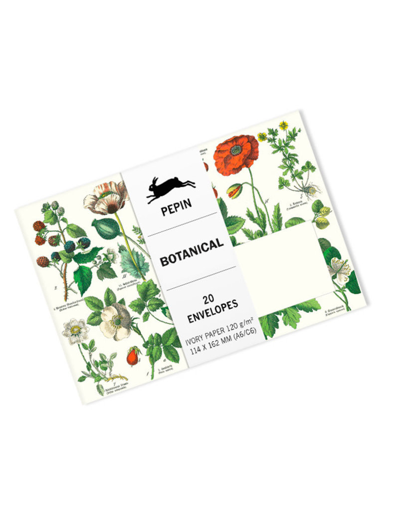 Pepin Press Enveloppen set van 20 stuks BOTANICAL