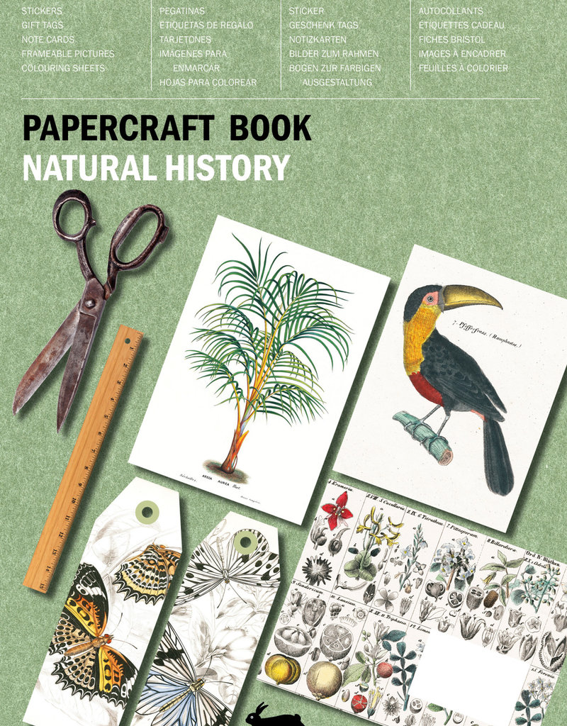 Pepin Press Papercraft Boek NATURAL HISTORY