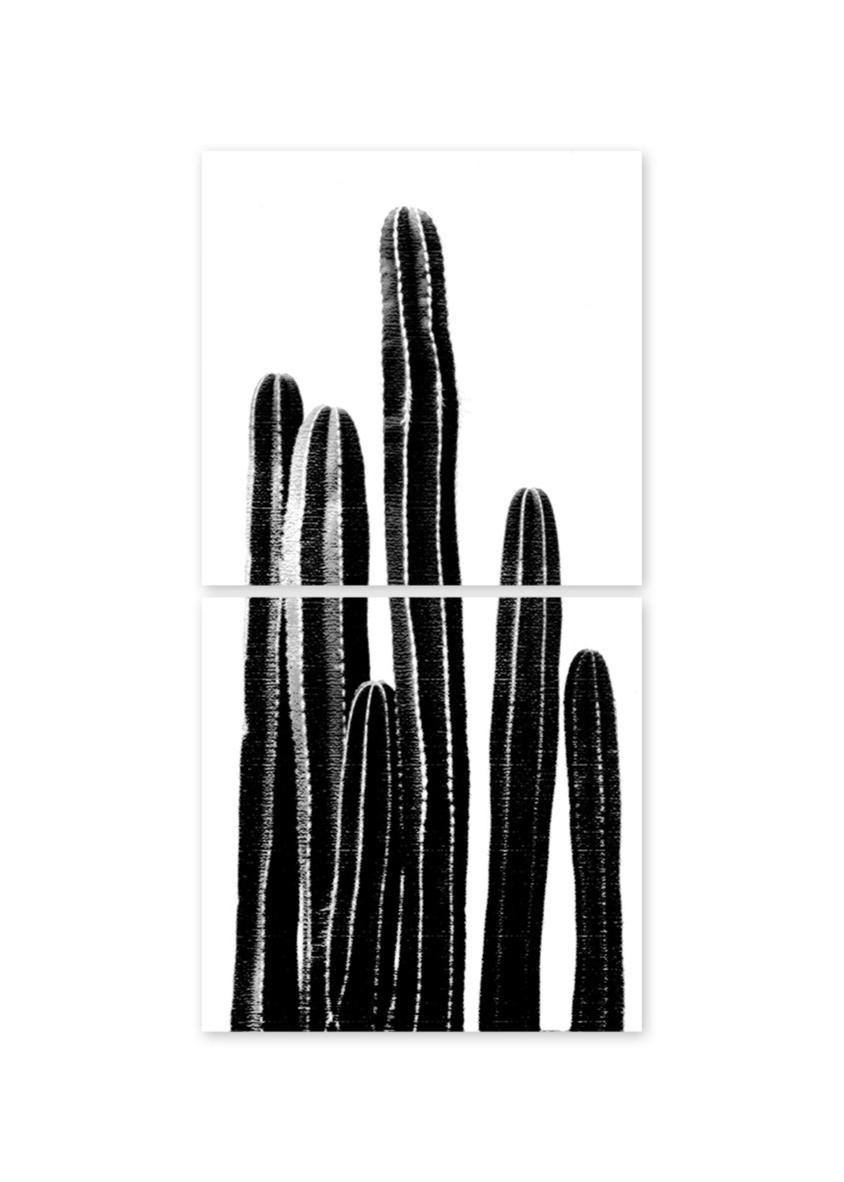 Boubouki Tegelsticker CACTUS set van 2