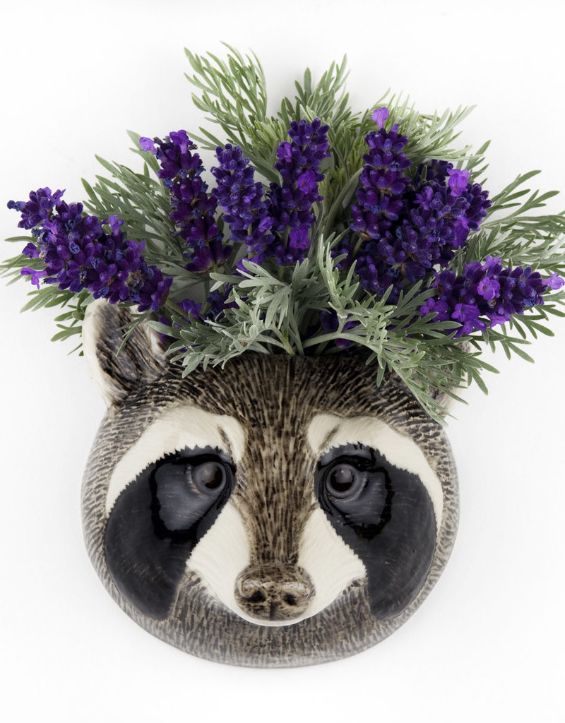 Quail Wandvaas WASBEER raccoon S