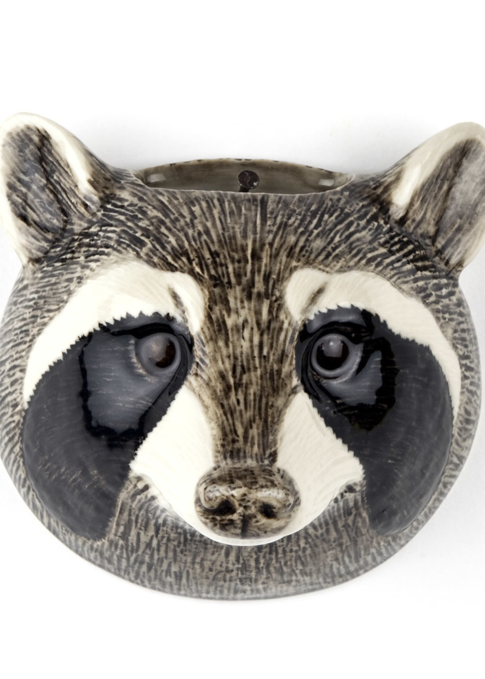 Quail Wandvaas WASBEER raccoon Small