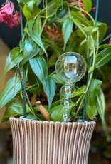 Affari Water bulb BOLLEN